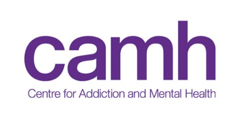 Image result for camh