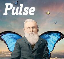 Pulse Spring 2013
